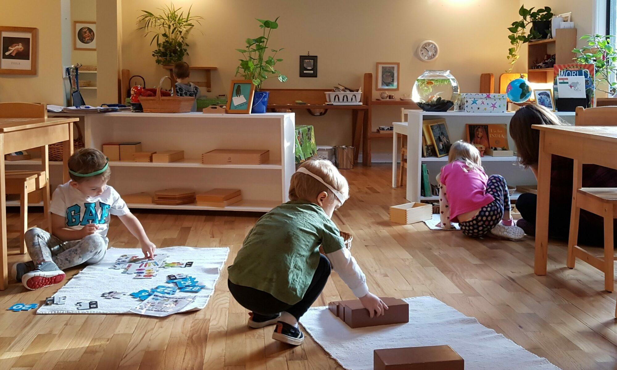 Vancouver Island Montessori Association